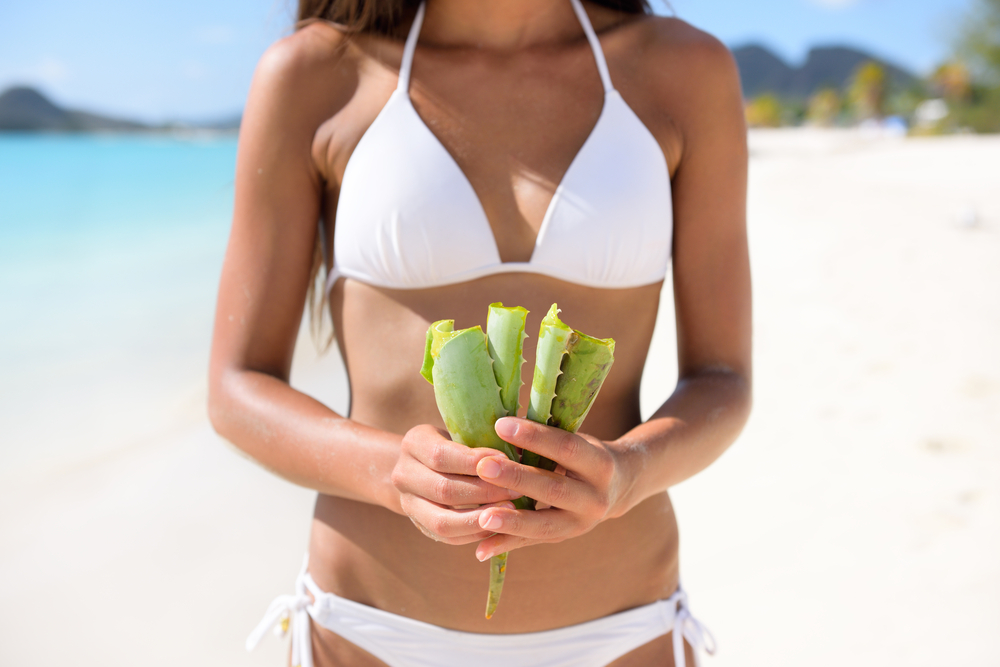 Beat sunburns with aloevera's soothing qualities.